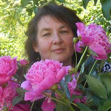Фотография девушки Наталья, 48 лет из г. Фурманов