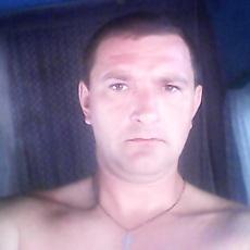 Фотография мужчины Волк, 39 лет из г. Ростов-на-Дону