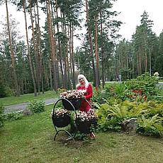 Фотография девушки Елена, 51 год из г. Витебск